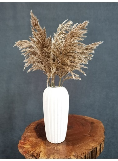 Kuru Çiçek Deposu Kuru Çiçek Şoklanmış 10'Lu Pampas Otu Karışık 60 Cm Kahve